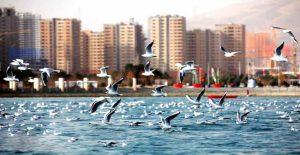 منطقه22 قطب گردشگری تهران